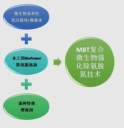 废水处理-MBT技术